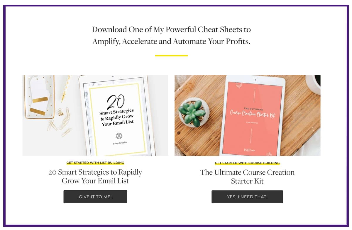 email list building example - amy porterfield