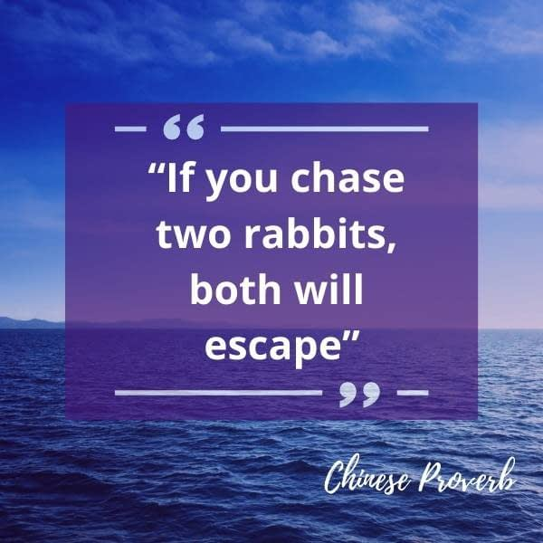 choose two rabbits quote
