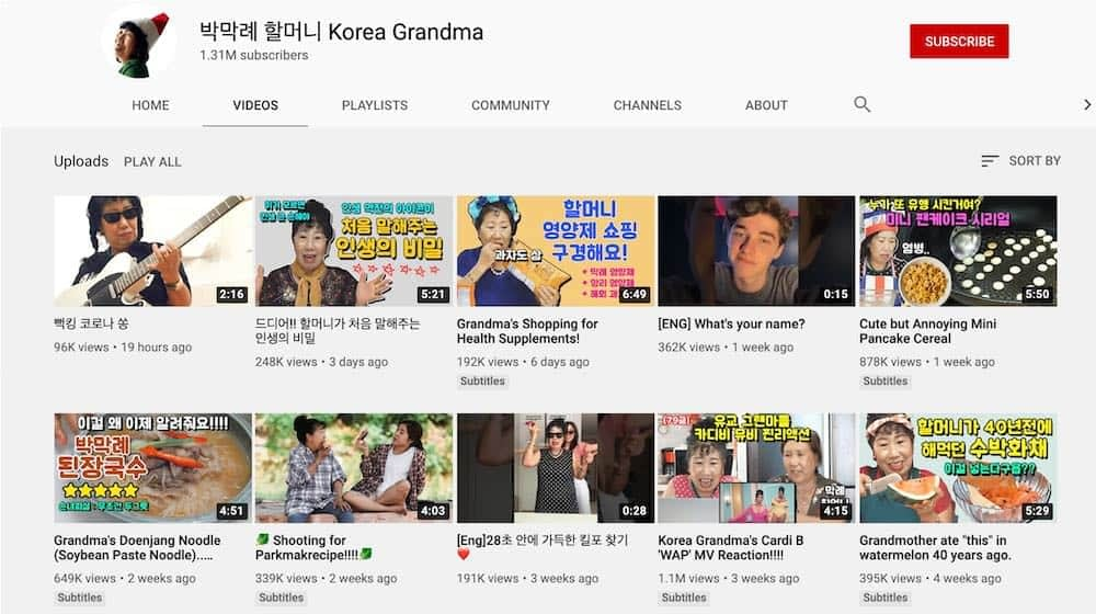korea-grandma influencer